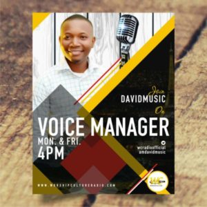 Voice Manager with David