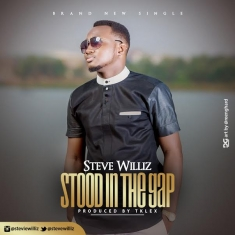 stood-in-the-gap-steve-willis