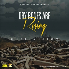 Chris Shalom - Dry Bones Are Rising [Art cover]
